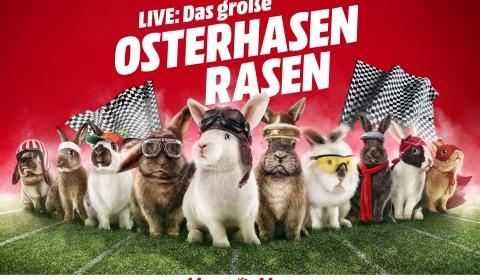 Osterhasen-Rasen Image